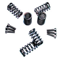 Mr Clutch Stainless Steel Spring Kit.